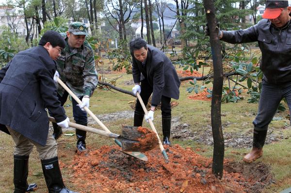 市院组织义务植树活动
